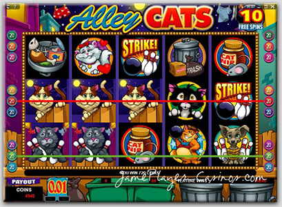 Play Alley Cats @ Casino Action